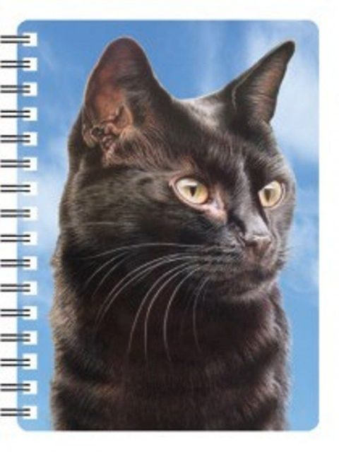 Cat 3D Notebook